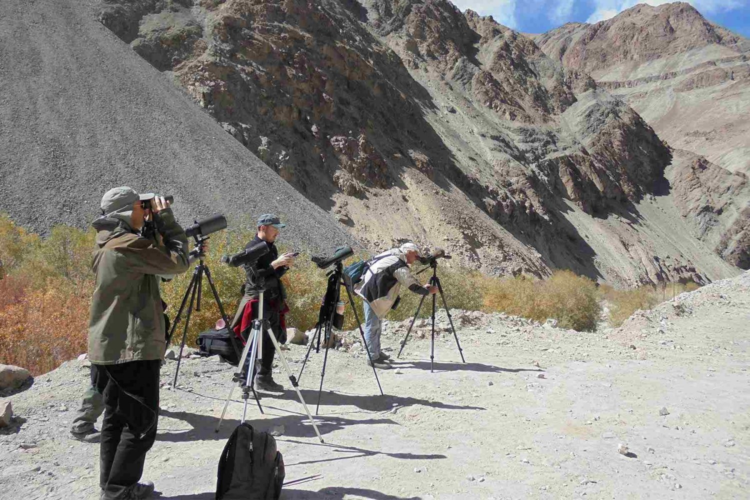 bird_watching_ladakh