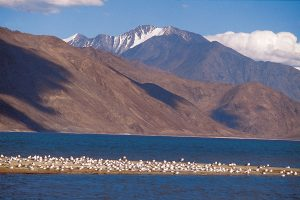 ladakh_tours_and_packages