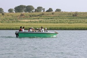 chambal_river_safari