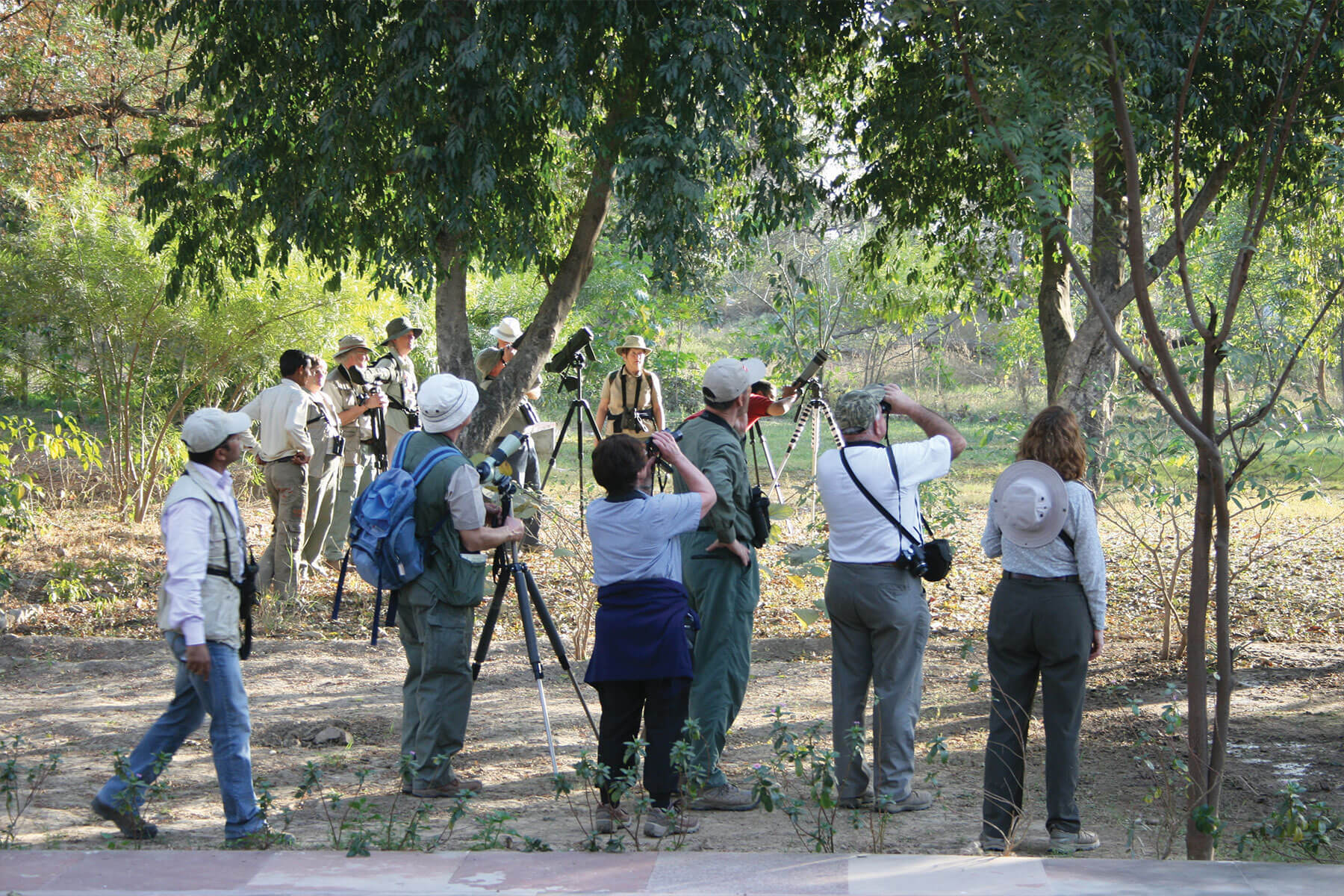 bird_watching_tour