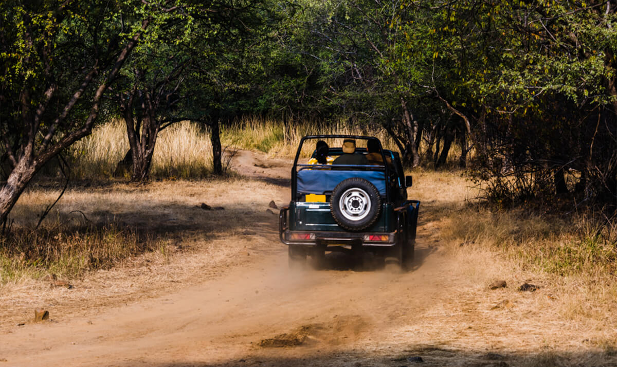 jeep_safari_tours