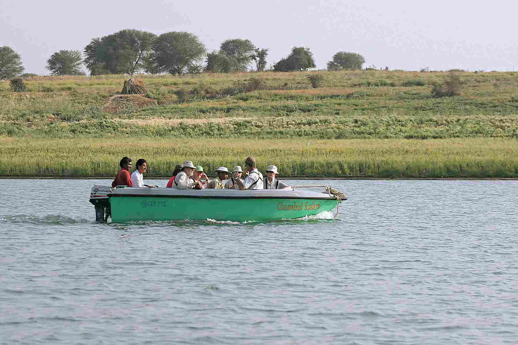 chambal_river_boat_safari_1