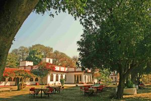 chambal_safaris_lodge